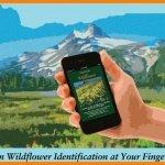 OregonWildFlowerApp