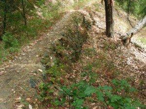 Rock Wall Along Ditch