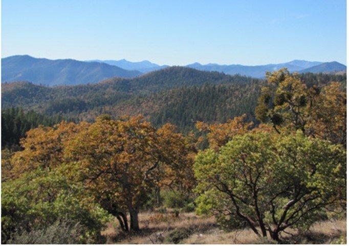 jackash-trail-view